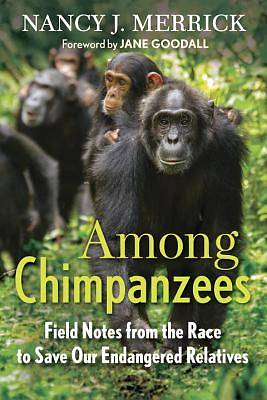 Picture of Among Chimpanzees