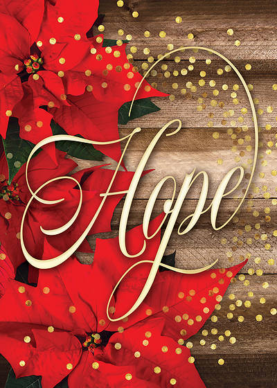 Hope Is Born Anew Christmas Boxed Cards
