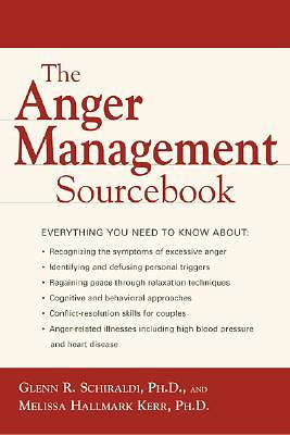 Picture of The Anger Management Sourcebook
