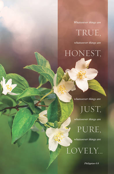 Picture of True Honest Just General Regular Size Bulletin