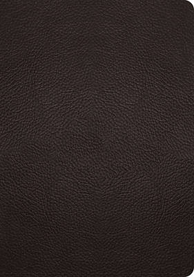 Picture of ESV Study Bible (Buffalo Leather, Deep Brown)