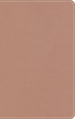 Picture of KJV On-The-Go Bible, Personal Size, Personal Size, Rose Gold Leathertouch