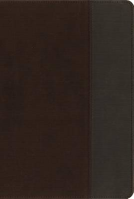 NIV, Quest Study Bible, Imitation Leather, Brown/Gray, Indexed