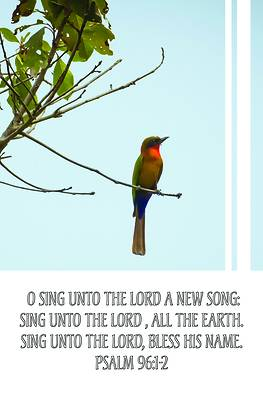 Picture of Sing Unto the Lord Bulletin (Pkg 100) General Worship