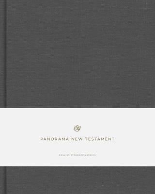 Picture of ESV Panorama New Testament (Cloth Over Board, Gray)