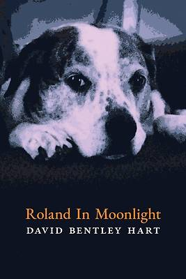 Picture of Roland in Moonlight
