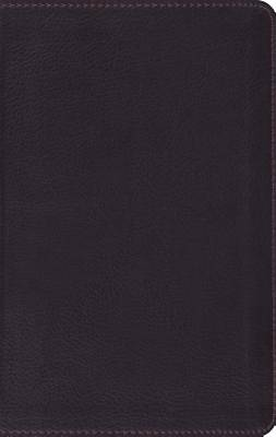ESV Large Print Compact Bible (Trutone, Coffee)