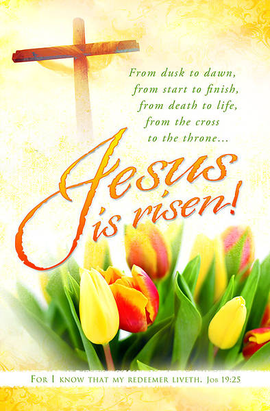 Easter Jesus Is Risen Tulip Bulletin Regular (Package of 100)