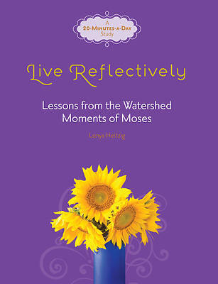 Picture of Live Reflectively