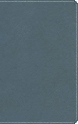 Picture of KJV On-The-Go Bible, Personal Size, Steel Blue Leathertouch