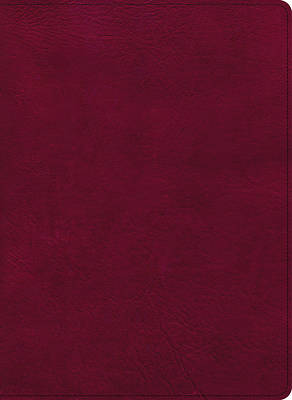Picture of CSB Holy Land Illustrated Bible, Burgundy Leathertouch