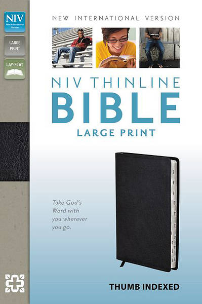 NIV Thinline Bible, Large Print