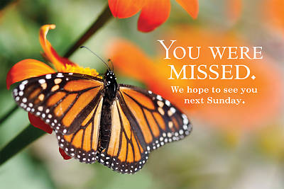 You Were Missed Butterfly Postcard (Pkg of 25)
