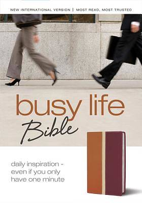 Bible New International Version Busy Life