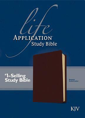 Life Application Study King James Version Bible