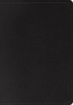 Picture of ESV Large Print Wide Margin Bible (Black)