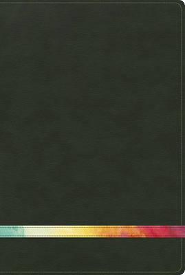 Picture of Rvr 1960 Biblia de Estudio Arco Iris, Verde Profundo/Multi Simil Piel Con Indice