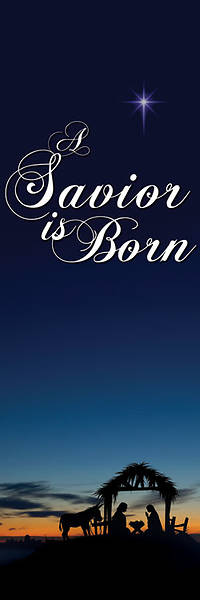 "Nativity Series Savior is Born Banner 18"" x 60"""