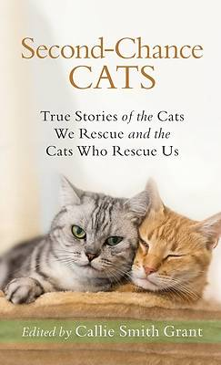 Picture of Second-Chance Cats