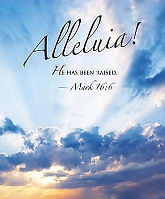 Alleluia! Easter Sunrise Bulletin 2012, Large Size (Package of 50)