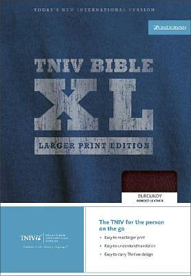 Picture of Today's New International Version Thinline Bible, XL