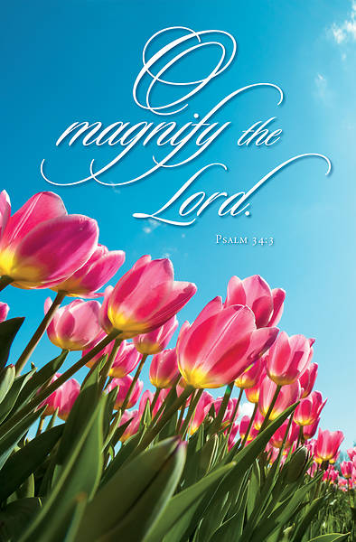 Picture of Magnify the Lord General Regular Size Bulletin