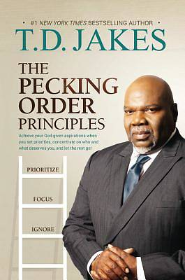 The Pecking Order Principles