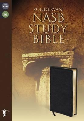 Picture of Zondervan Study Bible-NASB