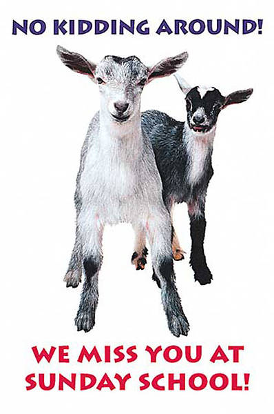Two Goats Miss you at Sunday School Postcard (Package of 25)
