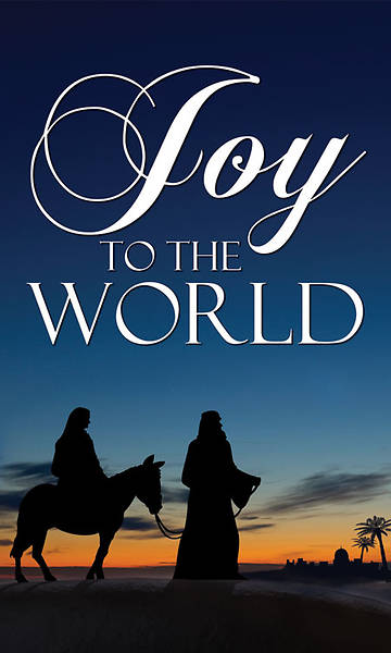 Nativity Series Joy to the World Banner 4 x 6