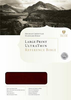 Large Print Ultrathin Reference Bible - HCSB