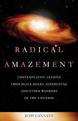 Picture of Radical Amazement