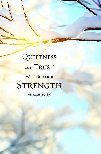 Quietness/Winter Bulletin 2013, Regular Size (Package of 50)