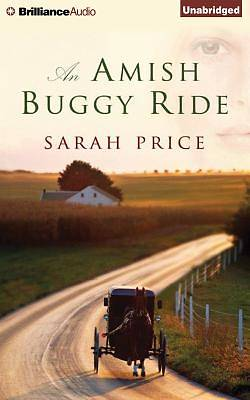 Picture of An Amish Buggy Ride