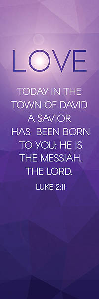 Love Luke 2 Advent Banner